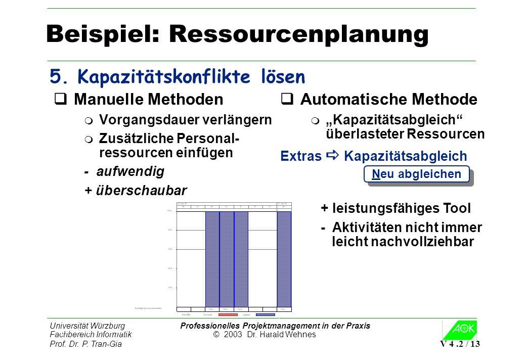 Universität Würzburg Professionelles Projektmanagement in der Praxis Fachbereich Informatik © 2003 Dr. Harald Wehnes Prof. Dr. P. Tran-Gia V 4.2 / 13