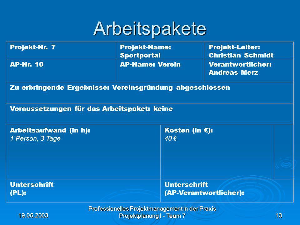 19.05.2003 Professionelles Projektmanagement in der Praxis Projektplanung I - Team 713 Arbeitspakete Projekt-Nr. 7Projekt-Name: Sportportal Projekt-Le