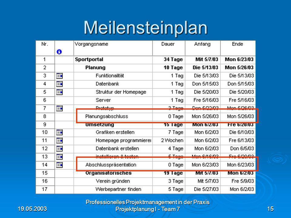 19.05.2003 Professionelles Projektmanagement in der Praxis Projektplanung I - Team 715 Meilensteinplan