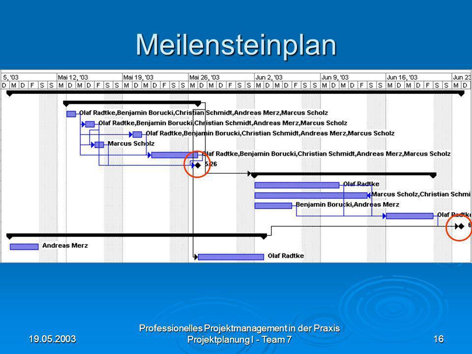 19.05.2003 Professionelles Projektmanagement in der Praxis Projektplanung I - Team 716 Meilensteinplan