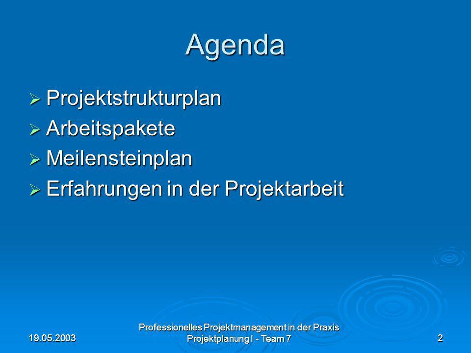 19.05.2003 Professionelles Projektmanagement in der Praxis Projektplanung I - Team 72 Agenda Projektstrukturplan Projektstrukturplan Arbeitspakete Arb