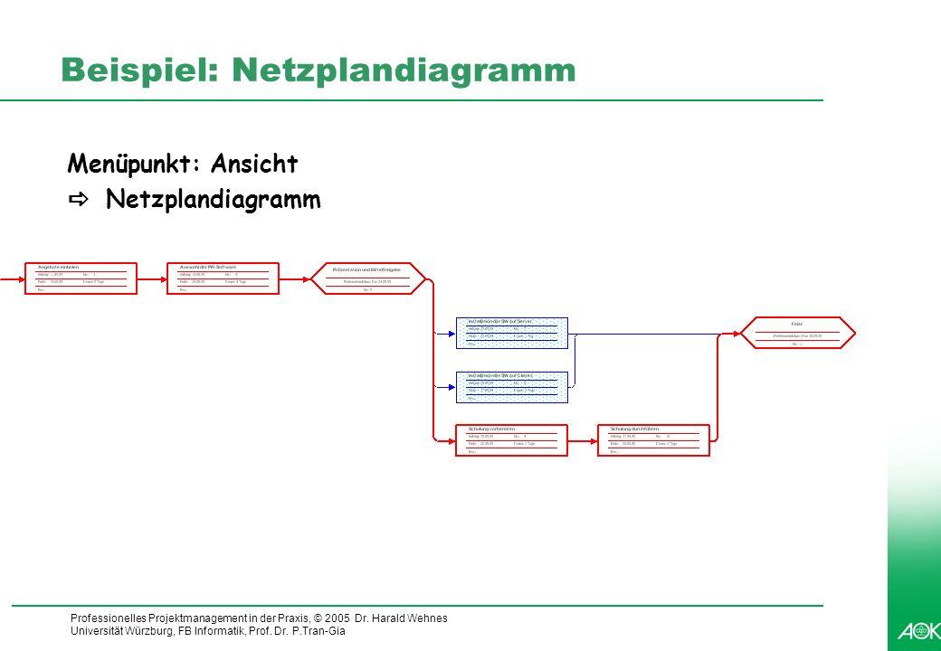 Professionelles Projektmanagement in der Praxis, © 2005 Dr. Harald Wehnes Universität Würzburg, FB Informatik, Prof. Dr. P.Tran-Gia 4 Beispiel: Netzpl