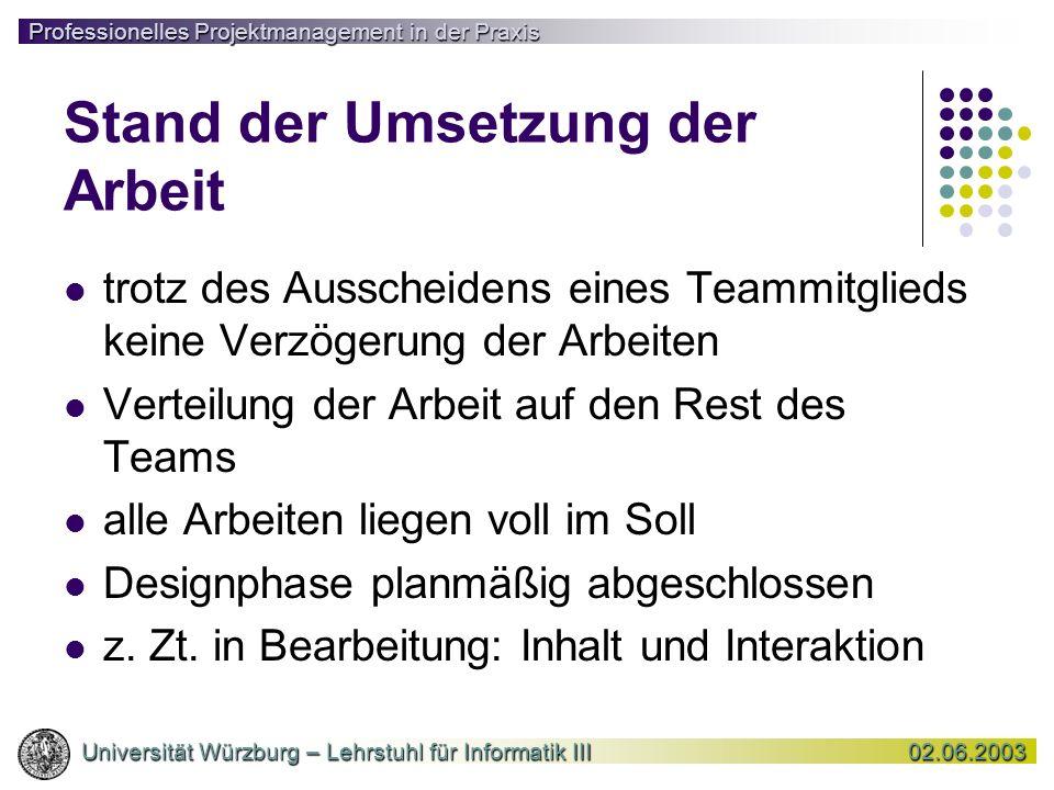 Professionelles Projektmanagement in der Praxis Universität Würzburg – Lehrstuhl für Informatik III02.06.2003 Universität Würzburg – Lehrstuhl für Inf