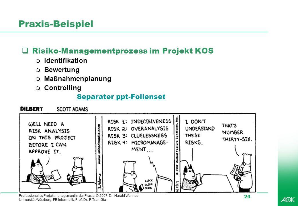Professionelles Projektmanagement in der Praxis, © 2007 Dr. Harald Wehnes Universität Würzburg, FB Informatik, Prof. Dr. P.Tran-Gia 24 Praxis-Beispiel