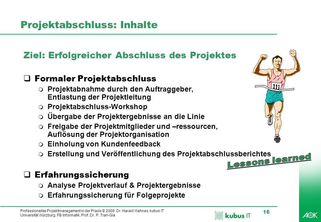 Professionelles Projektmanagement in der Praxis © 2009 Dr. Harald Wehnes, kubus IT Universität Würzburg, FB Informatik, Prof. Dr. P. Tran-Gia 16 Proje