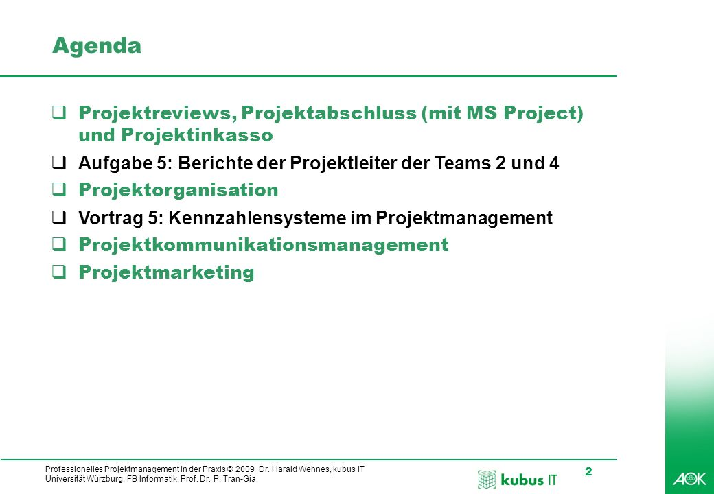 Professionelles Projektmanagement in der Praxis © 2009 Dr.