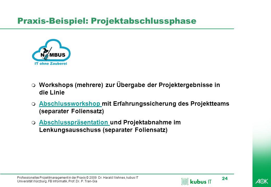 Professionelles Projektmanagement in der Praxis © 2009 Dr. Harald Wehnes, kubus IT Universität Würzburg, FB Informatik, Prof. Dr. P. Tran-Gia 24 Praxi