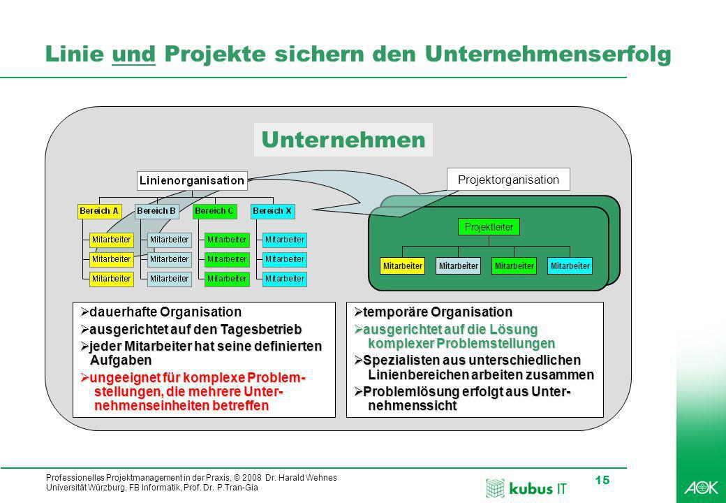 Professionelles Projektmanagement in der Praxis, © 2008 Dr.