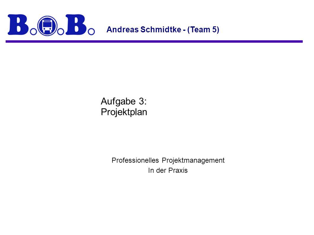 Professionelles Projektmanagement In der Praxis Aufgabe 3: Projektplan Andreas Schmidtke - (Team 5)