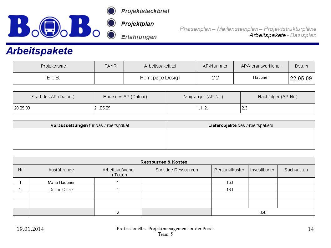 19.01.2014 Professionelles Projektmanagement in der Praxis Team 5 14 Projektsteckbrief Projektplan Erfahrungen Arbeitspakete Phasenplan – Meilensteinp