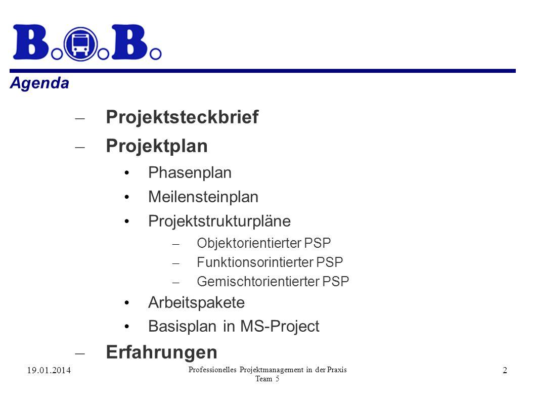 19.01.2014 Professionelles Projektmanagement in der Praxis Team 5 2 Agenda – Projektsteckbrief – Projektplan Phasenplan Meilensteinplan Projektstruktu