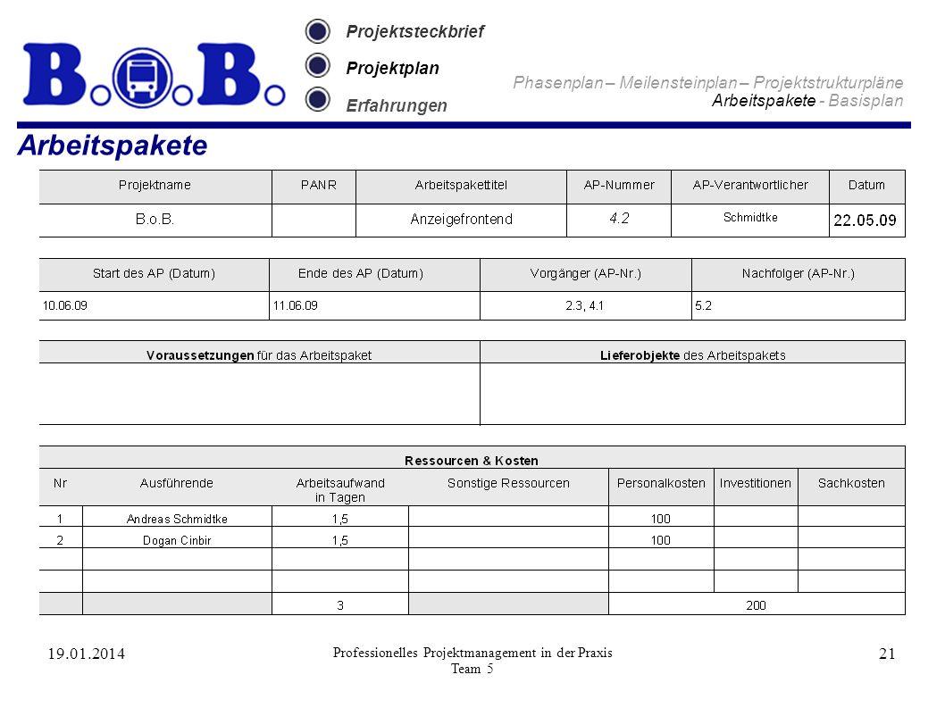 19.01.2014 Professionelles Projektmanagement in der Praxis Team 5 21 Projektsteckbrief Projektplan Erfahrungen Arbeitspakete Phasenplan – Meilensteinp