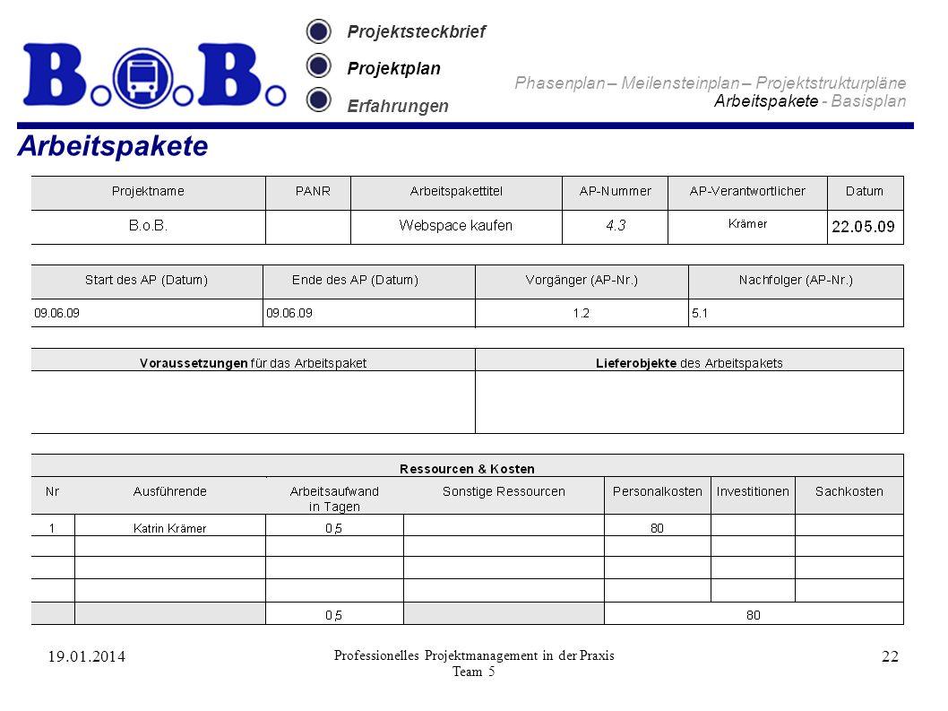 19.01.2014 Professionelles Projektmanagement in der Praxis Team 5 22 Projektsteckbrief Projektplan Erfahrungen Arbeitspakete Phasenplan – Meilensteinp