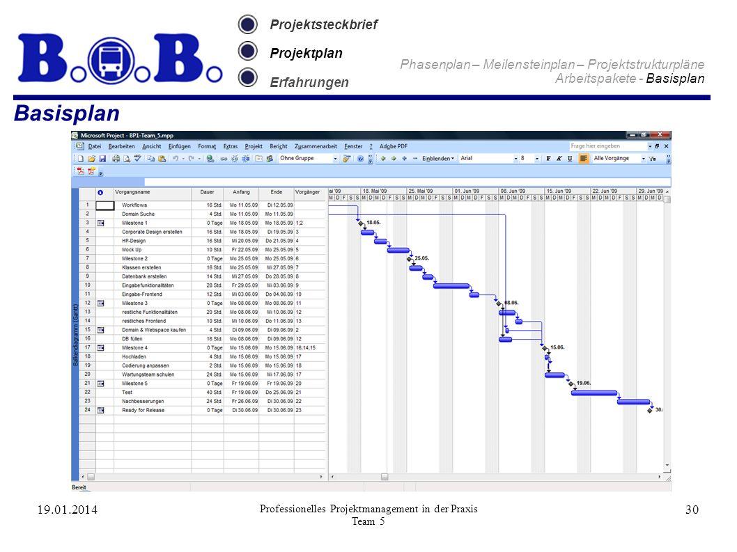 19.01.2014 Professionelles Projektmanagement in der Praxis Team 5 30 Projektsteckbrief Projektplan Erfahrungen Phasenplan – Meilensteinplan – Projekts