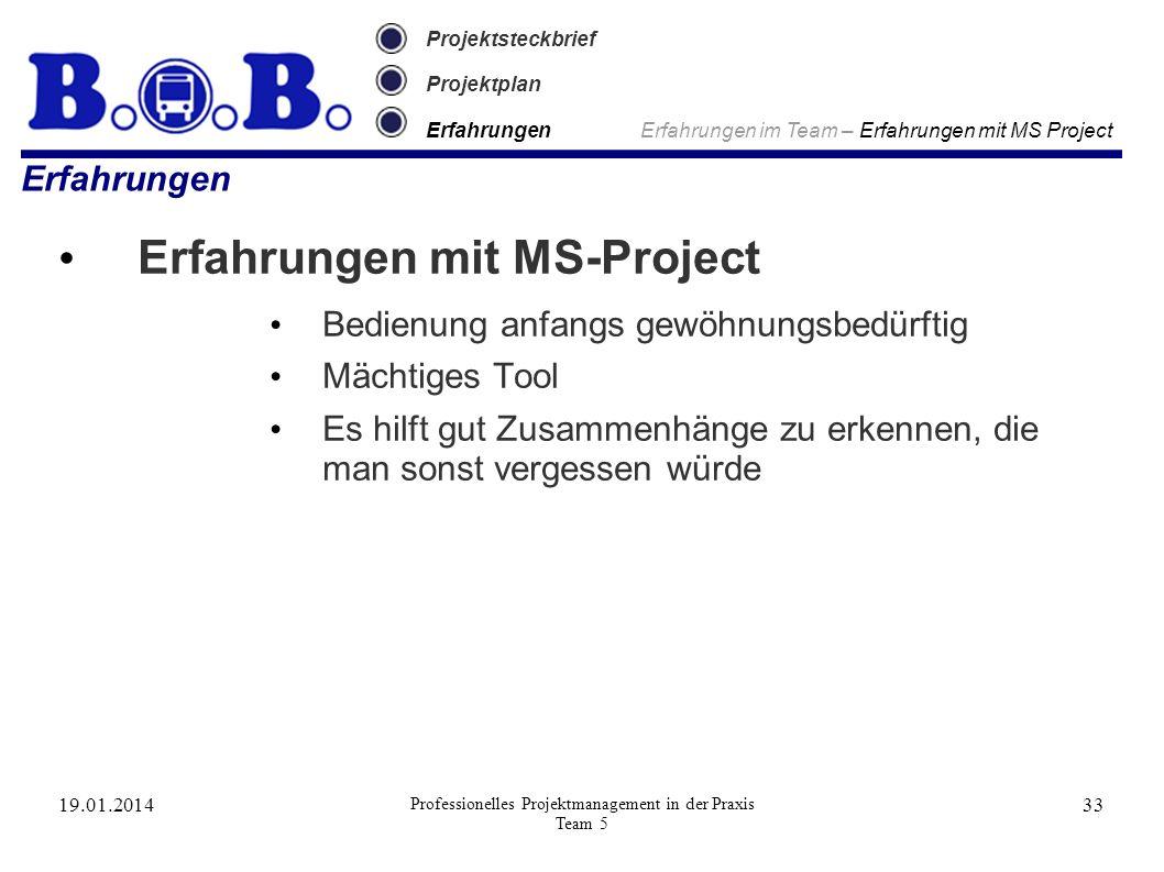 19.01.2014 Professionelles Projektmanagement in der Praxis Team 5 33 Projektsteckbrief Projektplan Erfahrungen Erfahrungen im Team – Erfahrungen mit M