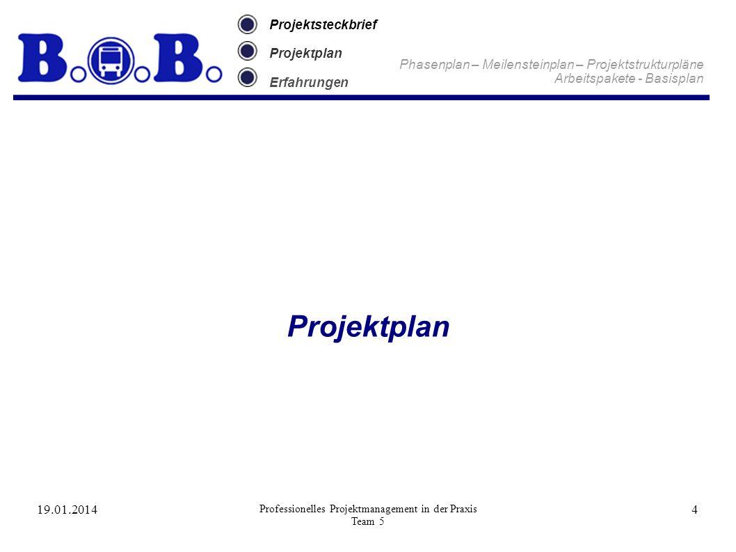19.01.2014 Professionelles Projektmanagement in der Praxis Team 5 4 Projektsteckbrief Projektplan Erfahrungen Projektplan Phasenplan – Meilensteinplan