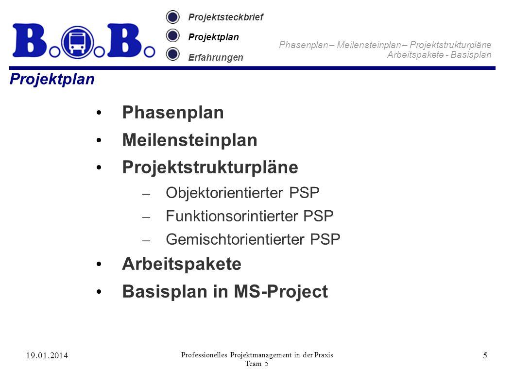 19.01.2014 Professionelles Projektmanagement in der Praxis Team 5 5 Projektsteckbrief Projektplan Erfahrungen Phasenplan – Meilensteinplan – Projektst