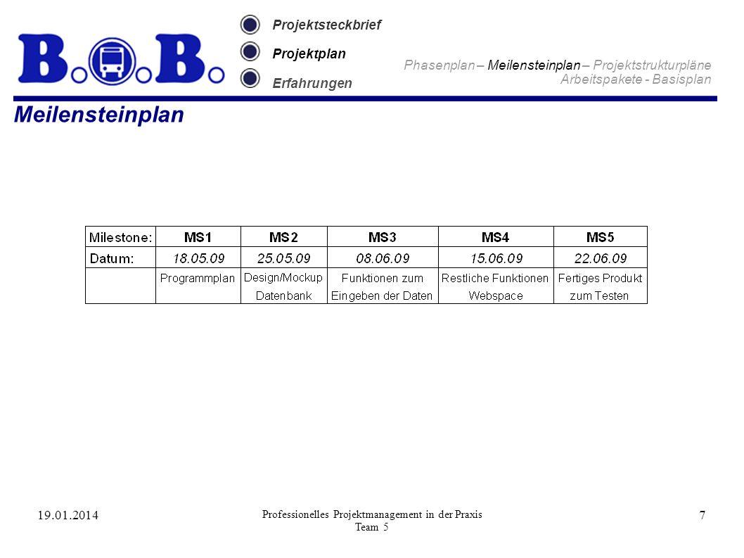 19.01.2014 Professionelles Projektmanagement in der Praxis Team 5 7 Projektsteckbrief Projektplan Erfahrungen Meilensteinplan Phasenplan – Meilenstein