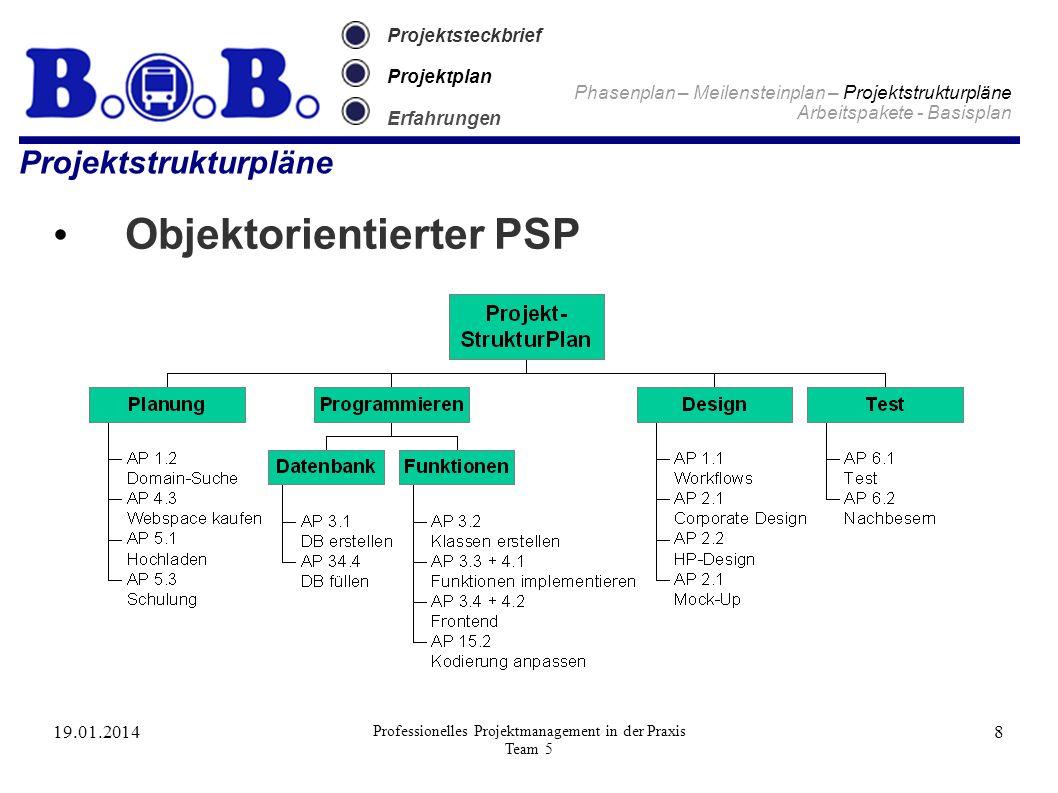 19.01.2014 Professionelles Projektmanagement in der Praxis Team 5 8 Projektsteckbrief Projektplan Erfahrungen Projektstrukturpläne Objektorientierter