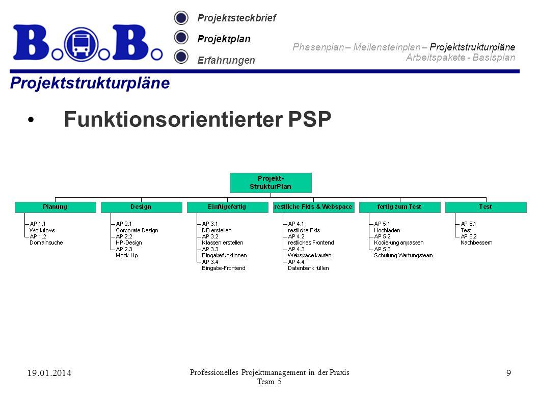 19.01.2014 Professionelles Projektmanagement in der Praxis Team 5 9 Projektsteckbrief Projektplan Erfahrungen Projektstrukturpläne Funktionsorientiert
