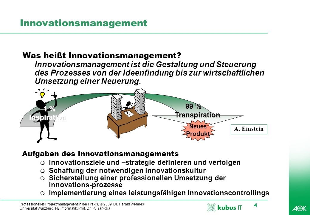Professionelles Projektmanagement in der Praxis, © 2009 Dr.