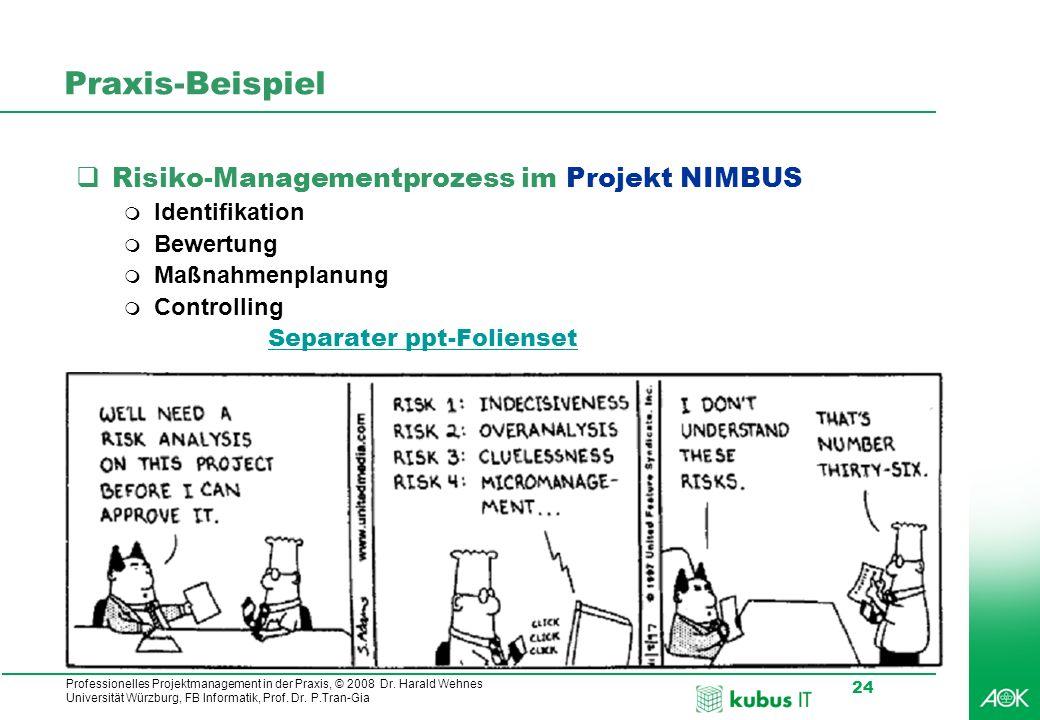 Professionelles Projektmanagement in der Praxis, © 2008 Dr. Harald Wehnes Universität Würzburg, FB Informatik, Prof. Dr. P.Tran-Gia 24 Praxis-Beispiel