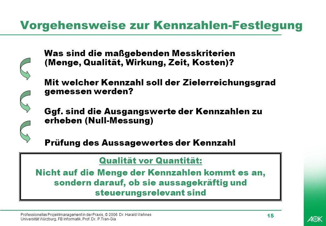 Professionelles Projektmanagement in der Praxis, © 2006 Dr. Harald Wehnes Universität Würzburg, FB Informatik, Prof. Dr. P.Tran-Gia 15 Vorgehensweise
