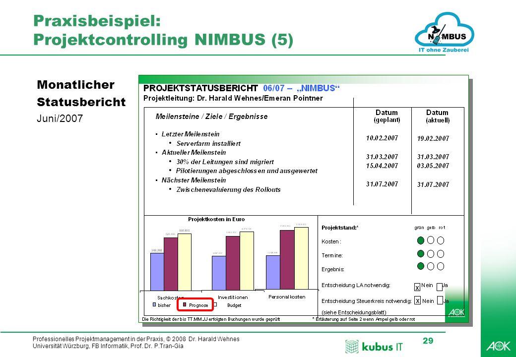 Professionelles Projektmanagement in der Praxis, © 2008 Dr. Harald Wehnes Universität Würzburg, FB Informatik, Prof. Dr. P.Tran-Gia 29 Praxisbeispiel: