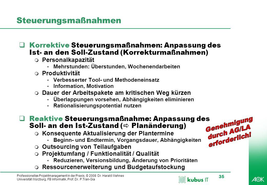Professionelles Projektmanagement in der Praxis, © 2008 Dr. Harald Wehnes Universität Würzburg, FB Informatik, Prof. Dr. P.Tran-Gia 35 Steuerungsmaßna