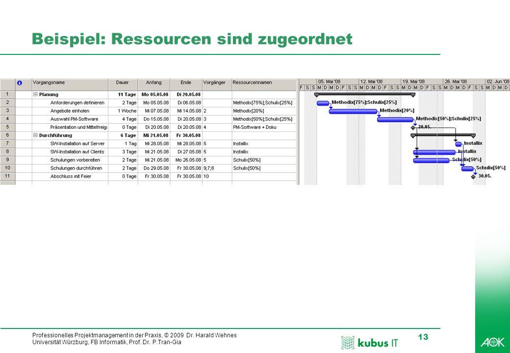 Professionelles Projektmanagement in der Praxis, © 2009 Dr. Harald Wehnes Universität Würzburg, FB Informatik, Prof. Dr. P.Tran-Gia 13 kubus-IT Beispi