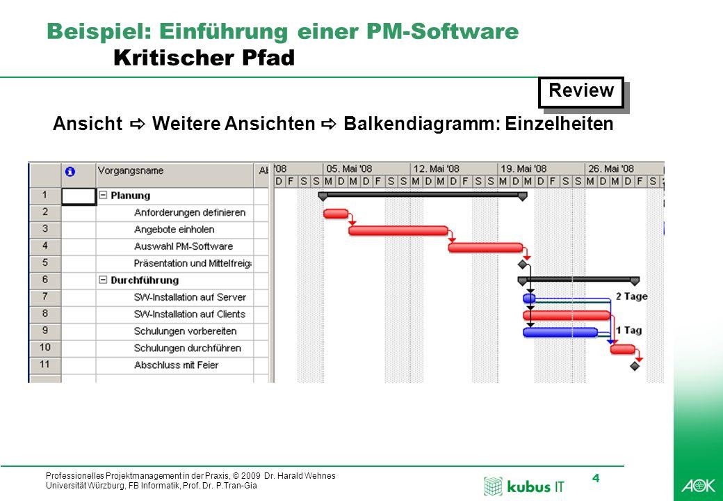 Professionelles Projektmanagement in der Praxis, © 2009 Dr. Harald Wehnes Universität Würzburg, FB Informatik, Prof. Dr. P.Tran-Gia 4 kubus-IT Beispie