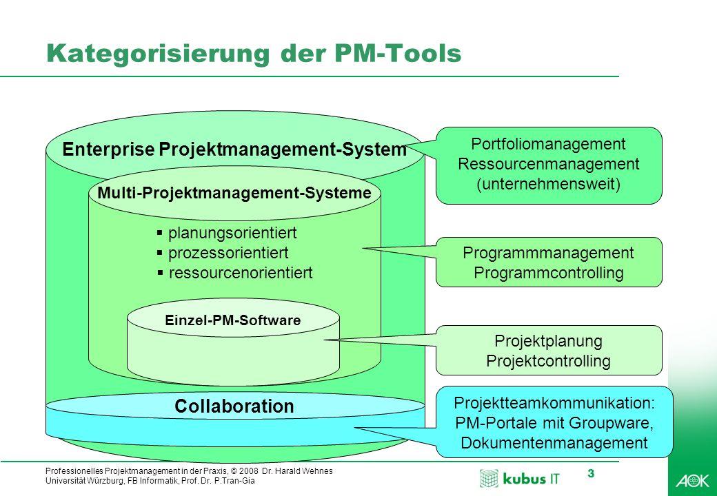 kubus IT Professionelles Projektmanagement in der Praxis, © 2008 Dr. Harald Wehnes Universität Würzburg, FB Informatik, Prof. Dr. P.Tran-Gia 3 Enterpr