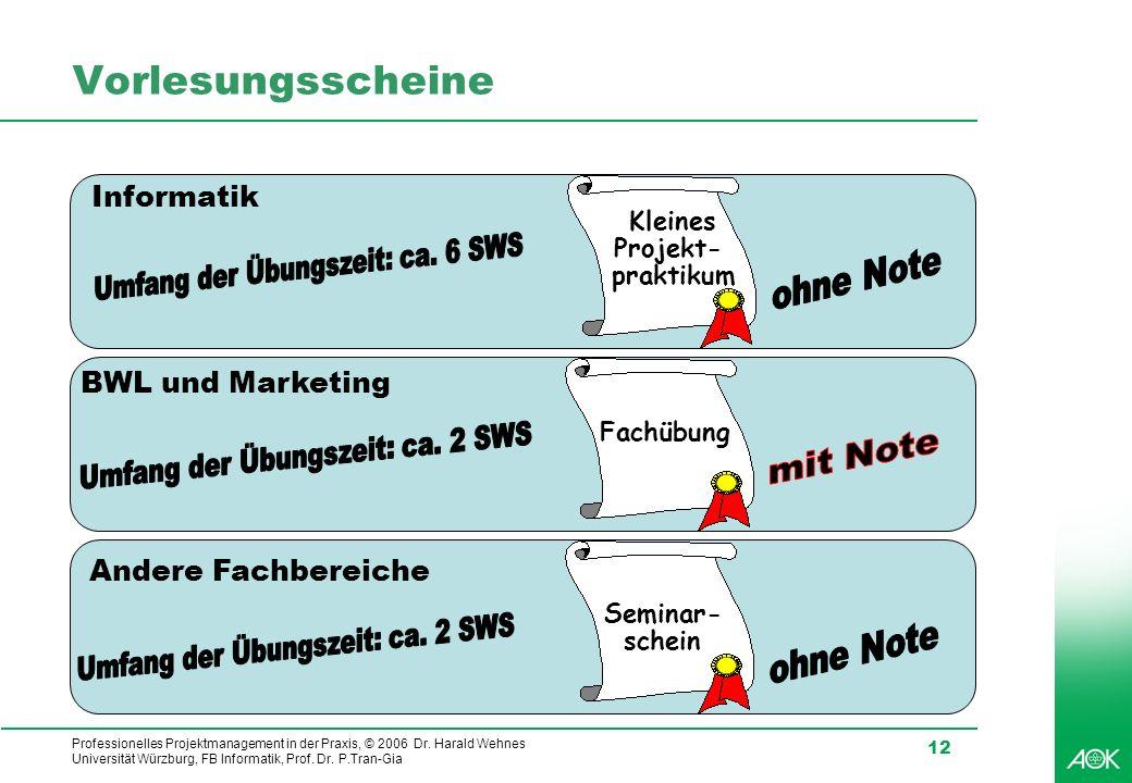 Professionelles Projektmanagement in der Praxis, © 2006 Dr. Harald Wehnes Universität Würzburg, FB Informatik, Prof. Dr. P.Tran-Gia 12 Vorlesungsschei