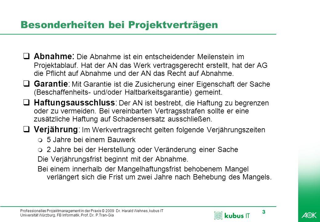 Professionelles Projektmanagement in der Praxis © 2009 Dr. Harald Wehnes, kubus IT Universität Würzburg, FB Informatik, Prof. Dr. P.Tran-Gia 3 Besonde