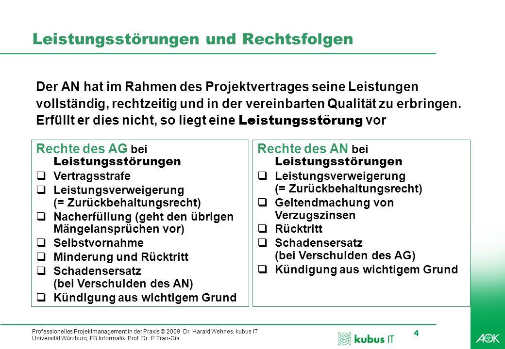 Professionelles Projektmanagement in der Praxis © 2009 Dr. Harald Wehnes, kubus IT Universität Würzburg, FB Informatik, Prof. Dr. P.Tran-Gia 4 Leistun