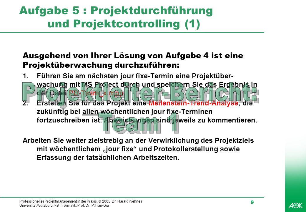 Professionelles Projektmanagement in der Praxis, © 2005 Dr.