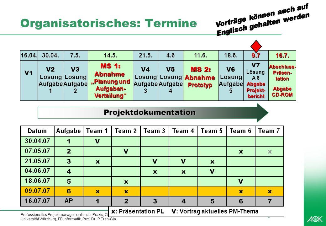 Professionelles Projektmanagement in der Praxis, © 2007 Dr. Harald Wehnes Universität Würzburg, FB Informatik, Prof. Dr. P.Tran-Gia 3 Projektdokumenta