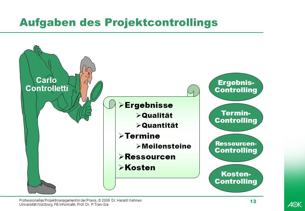 Professionelles Projektmanagement in der Praxis, © 2006 Dr. Harald Wehnes Universität Würzburg, FB Informatik, Prof. Dr. P.Tran-Gia 13 Aufgaben des Pr