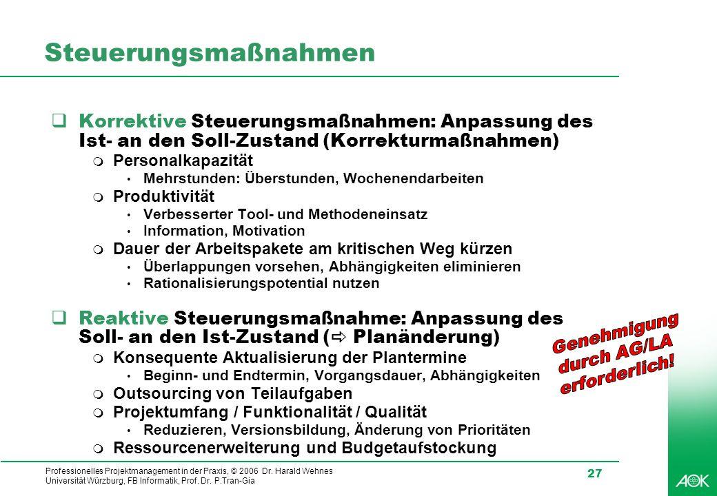 Professionelles Projektmanagement in der Praxis, © 2006 Dr. Harald Wehnes Universität Würzburg, FB Informatik, Prof. Dr. P.Tran-Gia 27 Steuerungsmaßna