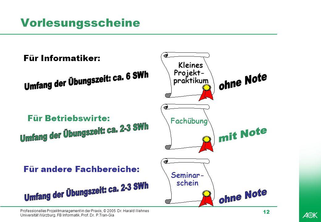 Professionelles Projektmanagement in der Praxis, © 2005 Dr. Harald Wehnes Universität Würzburg, FB Informatik, Prof. Dr. P.Tran-Gia 12 Vorlesungsschei