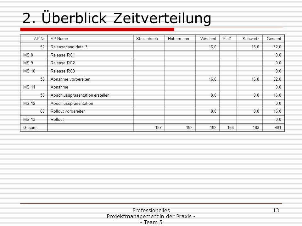 Professionelles Projektmanagement in der Praxis - - Team 5 13 2.