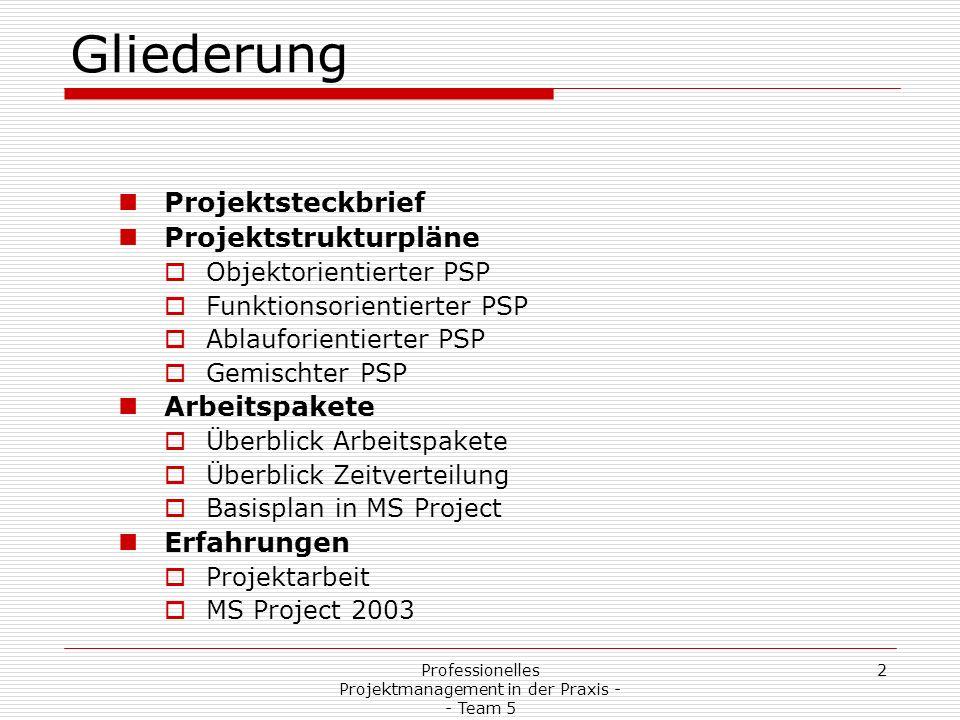 Professionelles Projektmanagement in der Praxis - - Team 5 2 Gliederung Projektsteckbrief Projektstrukturpläne Objektorientierter PSP Funktionsorienti