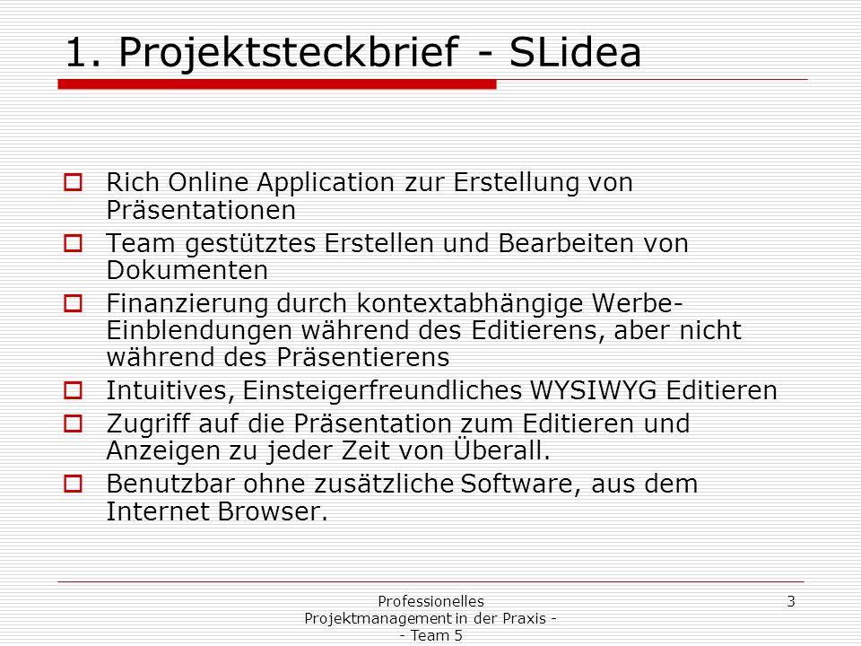 Professionelles Projektmanagement in der Praxis - - Team 5 24 2.