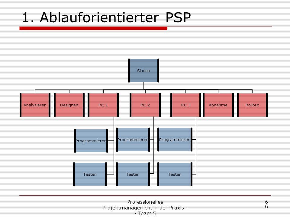 Professionelles Projektmanagement in der Praxis - - Team 5 17 2.