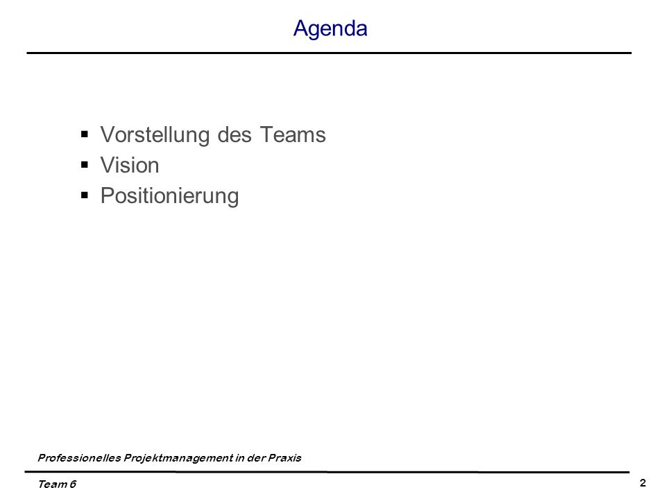 Professionelles Projektmanagement in der Praxis Team 6 2 Agenda Vorstellung des Teams Vision Positionierung