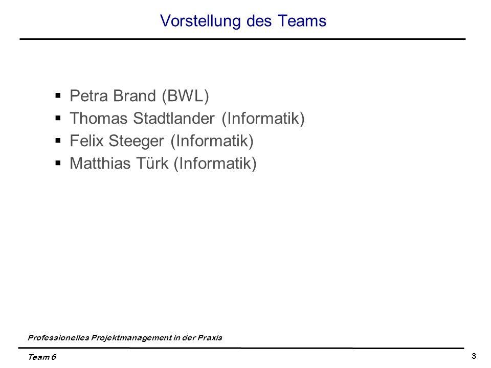 Professionelles Projektmanagement in der Praxis Team 6 3 Vorstellung des Teams Petra Brand (BWL) Thomas Stadtlander (Informatik) Felix Steeger (Informatik) Matthias Türk (Informatik)