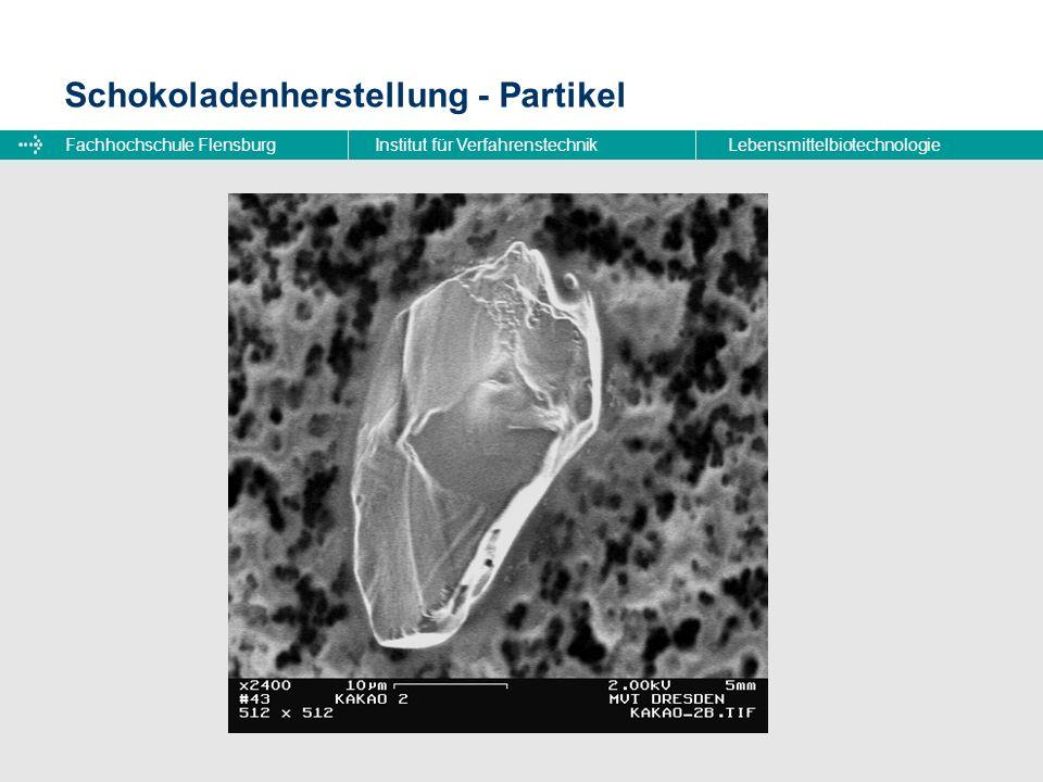 Fachhochschule FlensburgInstitut für VerfahrenstechnikLebensmittelbiotechnologie Schokoladenherstellung - Partikel