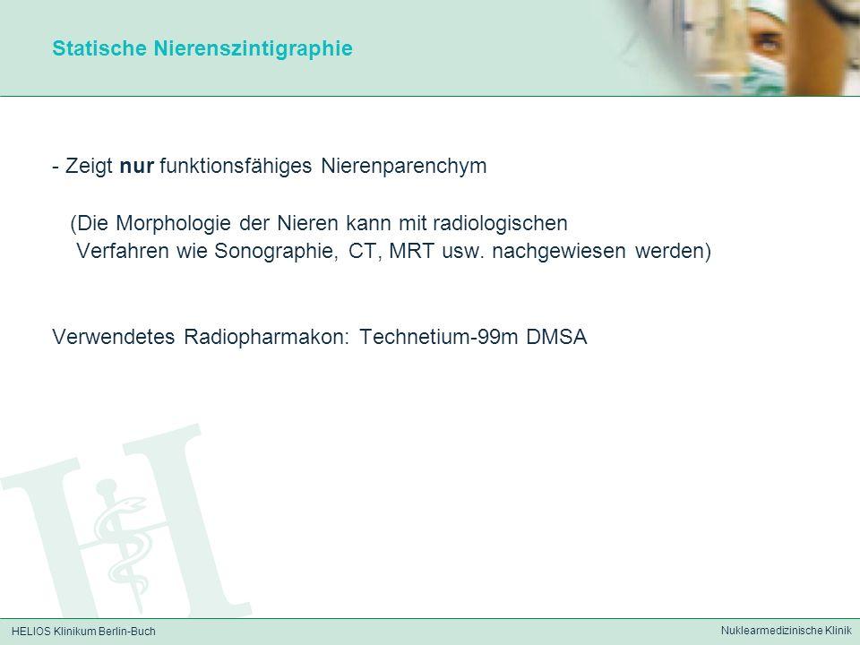 HELIOS Klinikum Berlin-Buch Nuklearmedizinische Klinik Statische Nierenszintigraphie - Zeigt nur funktionsfähiges Nierenparenchym (Die Morphologie der
