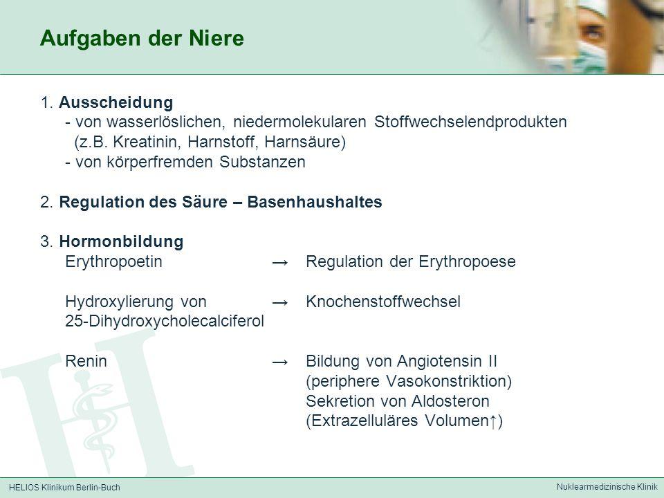 HELIOS Klinikum Berlin-Buch Nuklearmedizinische Klinik Aufgaben der Niere 1. Ausscheidung - von wasserlöslichen, niedermolekularen Stoffwechselendprod