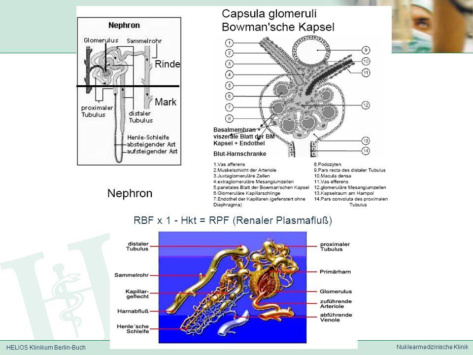 HELIOS Klinikum Berlin-Buch Nuklearmedizinische Klinik RBF x 1 - Hkt = RPF (Renaler Plasmafluß)
